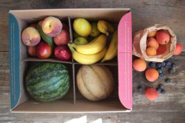 Box piccola di frutta bio