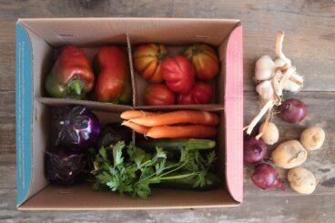 Box piccola di verdura bio
