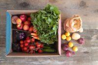 Box di frutta + verdura medio