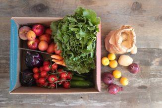 Box media di frutta e verdura bio