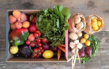 Box grande di frutta e verdura bio