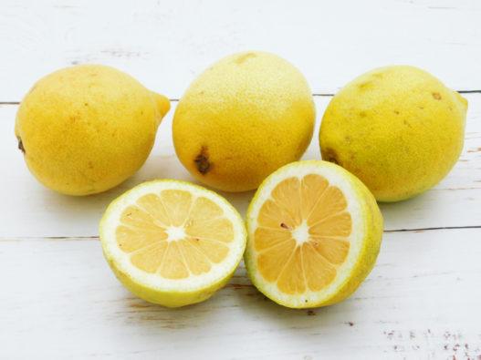limoni da agricoltura biologica