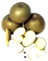 Mela Grigia Di Torriana - Antica Varietà