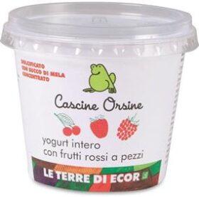 Yogurt intero con Frutti rossi a pezzi