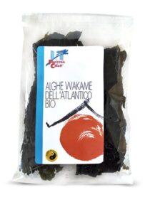 Alga Wakame dell'Atlantico