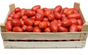 Pomodori da Salsa